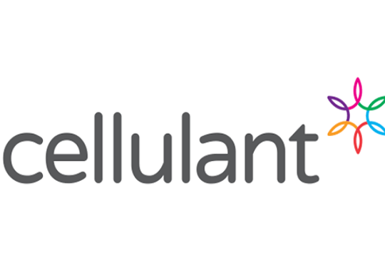Cellulant acquires license to roll out digital payment solutions in Ghana